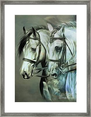 Oair Of Horses 01  Framed Print by Gull G