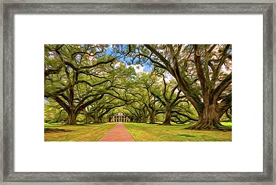 Oak Alley 5 - Paint Framed Print