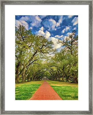 Oak Alley 7 - Paint Framed Print by Steve Harrington