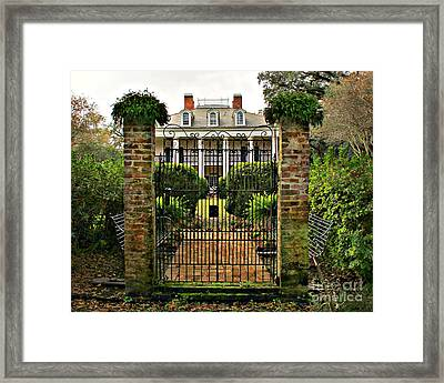 Oak Alley Gate Framed Print by Perry Webster