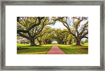 Oak Alley Path 2 - Paint Framed Print by Steve Harrington