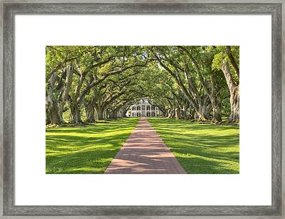 Oak Alley Plantation Framed Print