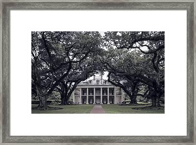 Oak Alley Plantation - Louisiana Framed Print