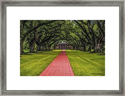 Oak Alley Plantation Framed Print by Paul Freidlund
