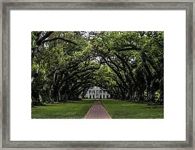 Oak Alley Plantation, Vacherie, Louisiana Framed Print