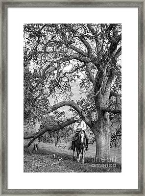 Oak Arches Framed Print