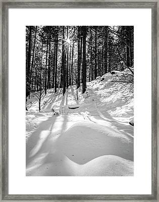 Oak Creek Canyon Framed Print by Alexey Stiop