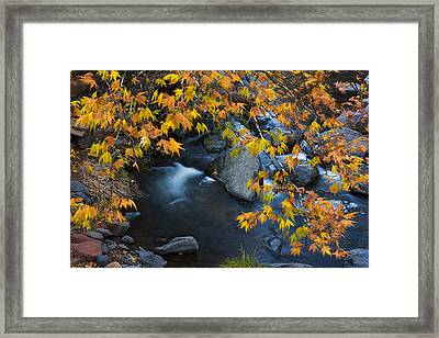 Oak Creek Canyon At Slide Rock In The Fall Framed Print by Dave Dilli