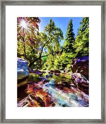 Oak Creek Sycamore Framed Print