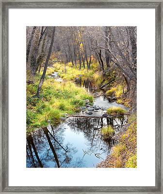 Oak Creek Twilight Framed Print by Carl Amoth