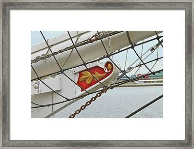 Oak Leaf Framed Print by Rick  Monyahan