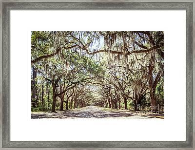 Oak Lined Road Framed Print by Joan McCool