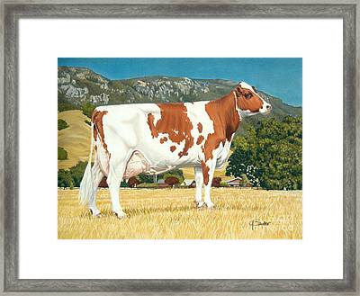 Oak Ridge Bruis Helga Framed Print by Gary Sauder