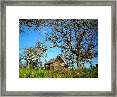 Oak Framed Print