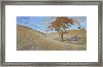 Oak Savanna, Autumn Framed Print