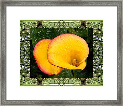 Oak Tree Cala Framed Print