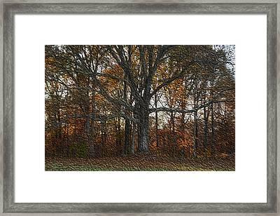 Embracing Autumn Framed Print