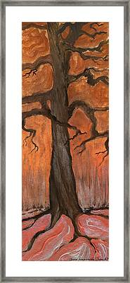 Oak Tree In The Fall Framed Print by Anna Folkartanna Maciejewska-Dyba