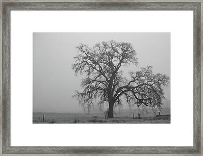 My Beloved Gray Central Valley Framed Print by Alessandra RC