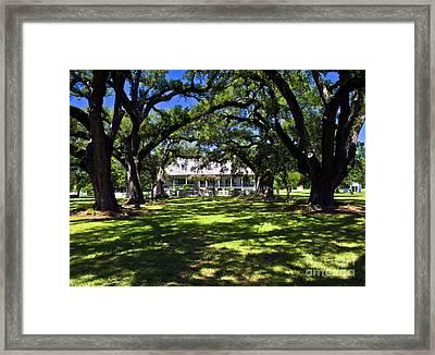 Framed Print featuring the photograph Oakland Plantation One by Ken Frischkorn