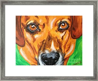 Oakley Framed Print