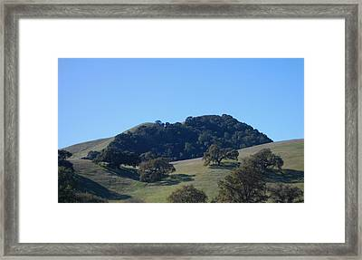 Oakscape Framed Print by Jean Booth