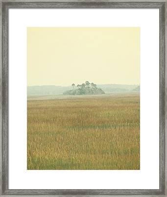 Oasis Framed Print by Amy Tyler