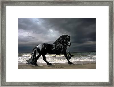 Oasis Of Serenity Framed Print
