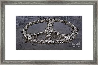 Oasis Framed Print by Xn Tyler