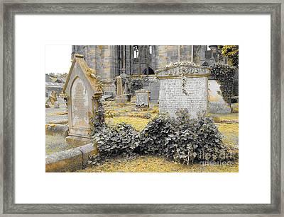 Oblivion. Ivy And Golden Lichen Framed Print