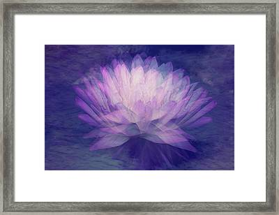 Obscured  Framed Print