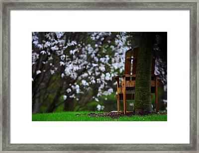 Observation Chair Framed Print by David Christiansen