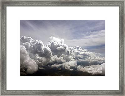 Observers Framed Print by Marcia Lee Jones