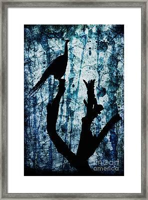 Obsidian Realm Framed Print