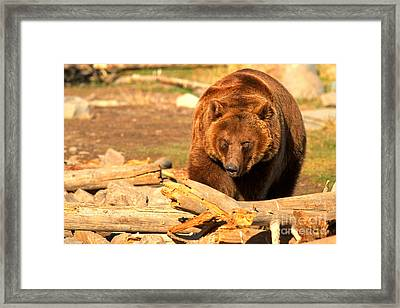 Obstacles Framed Print by Adam Jewell