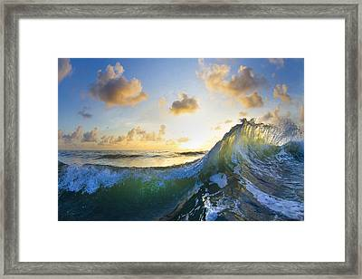 Ocean Bouquet  -  Part 1 Of 3 Framed Print