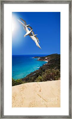 Ocean Breeze Framed Print by Jorgo Photography - Wall Art Gallery