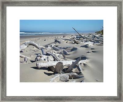 Ocean Coastal Art Prints Driftwood Beach Framed Print