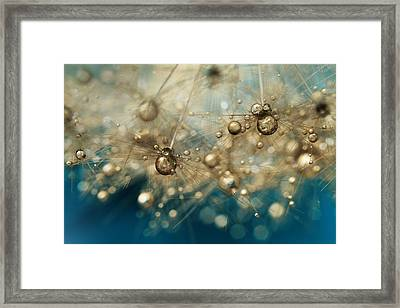 Framed Print featuring the photograph Ocean Deep Dandy Drops by Sharon Johnstone