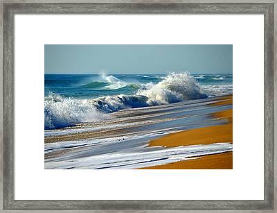 Ocean Delight Framed Print by Dianne Cowen