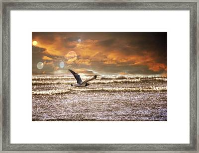 Ocean Framed Print featuring the photograph Ocean Flight by Aaron Berg