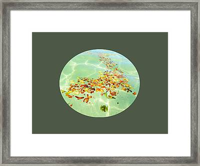 Framed Print featuring the photograph Ocean Flowers Oval by Linda Hollis