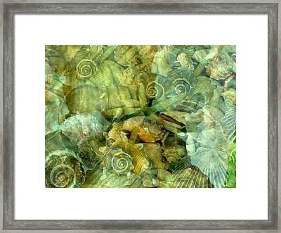 Ocean Gems Underwater Framed Print