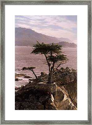 Ocean Haze  Framed Print by Brendon Bradley