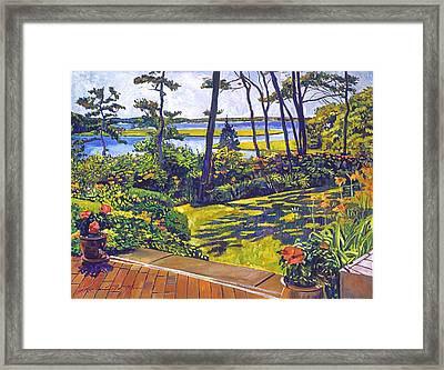Ocean Lagoon Garden Framed Print by David Lloyd Glover