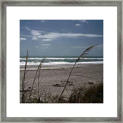 Ocean Morning Framed Print