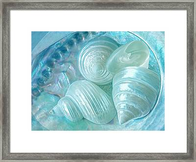Ocean Pearl Treasure Framed Print by Gill Billington