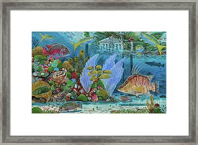 Ocean Reef Paradise Framed Print by Carey Chen