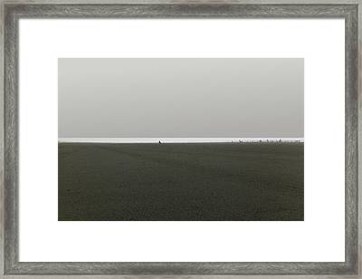 Ocean Shores Framed Print by Marcello Cicchini