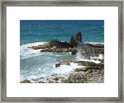 Ocean Spray Mid-air Framed Print